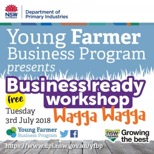 Getting Started - Business Ready Workshop WAGGA WAGGA
