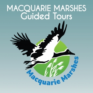 Macquarie Marshes Guided tours (Departs Dubbo)